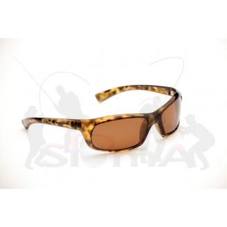 EYE Level Brýle Tidal + pouzdro zdarma!
